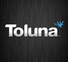 Sondages rémunérés – Le test Toluna